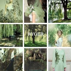 House Ryger of Willow Wood, sworn to Tully House Ryger is a noble house from Willow Wood in the Riverlands. They blazon their arms with a weeping willow, green on white. During Robert's Rebellion the Rygers defied their overlords and stayed loyal to House Targaryen. Ser Robin Ryger is the captain of the guards at Riverrun.