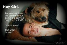 Hey Girl, It's a Service Dog!