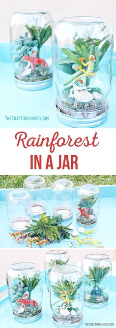 Rainforest in a jar - use faux succulents and a mason jar to create a mini Rainf. Rainforest in a jar - use faux succulents and a mason jar to create a mini Rainforest - crafts for kids - kids birth Diy Gifts In A Jar, Diy Gifts For Kids, Birthday Gifts For Kids, Jar Gifts, Birthday Diy, Diy For Kids, Crafts For Kids, Birthday Board, Crafts For Seniors