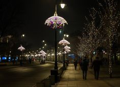 See Why Christmas in Poland is Truly the Most Wonderful Time of the Year!