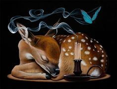 Creating stunning, realistic depictions of animals and objects, Canadian artist Jacub Gagnon includes surreal elements within his compositions, taking us out of… Animal Art, Pop Art Illustration, Cartoon Animals, Artist, Wildlife Art, Surrealism, Illusion Art, Animal Illustration, Outdoor Art