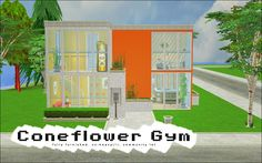 Coneflower Gym from Apple Springs - a gym + pool + jacuzzi + ballet community lot. It's packaged as shown, fully furnished and therefore cc heavy and large. You need to use the Clean Installer because...