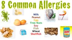 Eight of the most common allergens.