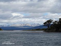 Le passage du cap Horn - Meet Wild Animals In Patagonia, He Is Able, Wild Animals, Horn, Trek, Chile, Remote, I Am Awesome, Coast