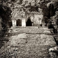 Square Collection - Mayan Ruins in Palenque V by Philippe Hugonnard : Ancient Greek Architecture, Gothic Architecture, Mayan Ruins, Ancient Ruins, Grand Mosque, Angkor Wat, Vietnam Travel, London City, Incredible India