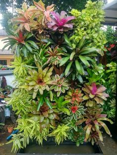 Stunning Vertical Garden for Wall Decor Ideas Do you have a blank wall? the best way to that is to create a vertical garden wall inside your home. A vertical garden wall, also called… Continue Reading → Tropical Garden Design, Vertical Garden Design, Tropical Landscaping, Landscaping Plants, Front Yard Landscaping, Tropical Plants, Tropical Gardens, Green Plants, Landscaping Ideas