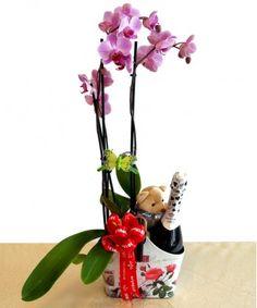 Flower Arrangements, Flowers, Plants, Gifts, Floral Arrangements, Presents, Plant, Favors, Royal Icing Flowers
