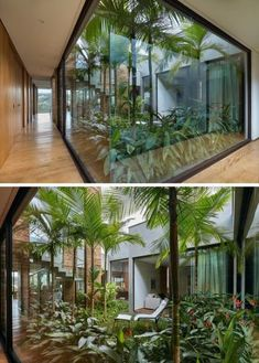 Floor to ceiling windows, skylights and retractable walls fill this modern home with natural light. indoor garden 8 Interesting Floor to Ceiling Windows Ideas for Modern Houses Casa Patio, Backyard Patio, Backyard Landscaping, Landscaping Ideas, Backyard Ideas, Tropical Backyard, Backyard Guest Houses, Patio Decks, Backyard Furniture