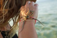 sea star shot #melonseedjewellery