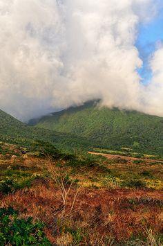 Savane de Liamuiga Saint Kitts #Caribbean