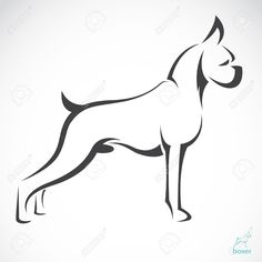 Vector Image Of An Dog Boxer On White Background Royalty Free Cliparts, Vectors, And Stock Illustration. Pic 19659837.