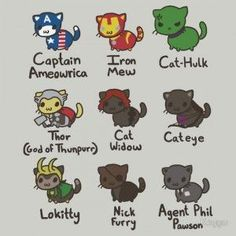 avengers cats - Google Search