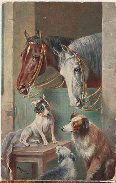 pc paarden honden Ch Reichert  1915
