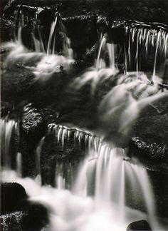 Ansel Adams - Fern Spring, Dusk