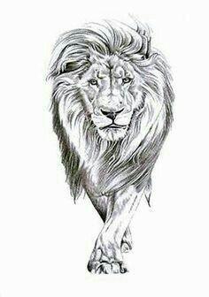 Tattoo Bein, Leo Tattoos, Sleeve Tattoos, Tatoos, Lion Head Tattoos, Horse Tattoos, Celtic Tattoos, Animal Tattoos, Graffiti Designs