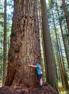 15 Unusual Hikes Near Vancouver | Happiest Outdoors Vancouver Hiking, Photography Basics, Backpacking, Camping, Canada Travel, Hiking Clothes, Hiking Trails, Best Brand, Amazing Women