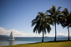 Things you can do in Cairns and Green Island by Travelettes blog.