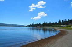 Escape to Big Bear - West Oceanfront Magazine Big Bear Lake, Landscape, Beach, Water, Pine, Sunshine, Travel, Outdoor, Green