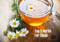 Herbs For Sleep - Blog