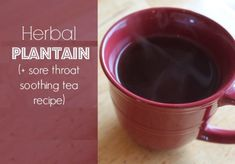 Herbal Spotlight: Plaintain (and Sore Throat Soothing Tea Recipe) - Shalom Mama natural health tip Cough Remedies, Herbal Remedies, Sore Throat Tea, Best Mixed Drinks, Spot Light, Herbs For Health, Natural Cold Remedies, Natural Health Tips, Tea Recipes