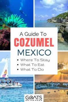 Your ultimate travel guide to Cozumel, Mexico, including the best restaurants and bars to where to stay in Cozumel and the best activities such as snorkelling in cenotes and hiking mayan ruins Maui Vacation, Mexico Vacation, Mexico Travel, Vacation Spots, Mexico Honeymoon, Vacation Places, Vacation Ideas, Tulum, Xel Ha