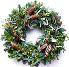 The Wreath Depot - Annscroft Fresh Evergreen Christmas Wreath 22 in, $63.97 (http://www.thewreathdepot.com/annscroft-fresh-evergreen-christmas-wreath-22-in/)