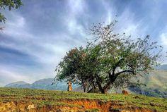 Countryside, Landscape, Paisaje, Campo, Barbosa, Antioquia, Colombia