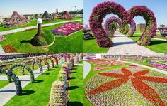 Dubai Miracle Garden is the biggest flower garden in the world. Description from katherineatencion.com. I searched for this on bing.com/images