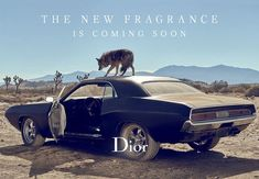 Dior Sauvage - Johnny Depp Takes a Road Trip Through the Desert (2015) {New Fragrance} {Men's Cologne} {Perfume Images & Ads}