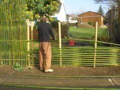 j'ai conçu pour mes voisins une structure de bambous reposant sur 6 solides piquets d'acacia hauts de 2 mètres. La première partie à gauche est un plessis vertical de cannes moyennes s'appuyant sur 3 traverses horizontales .ce plessis s'étend sur environ...