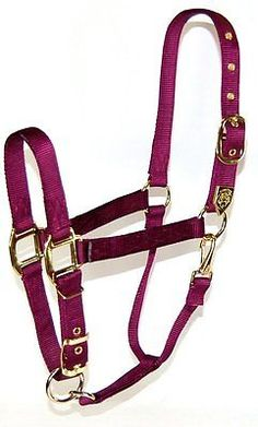 Other English Tack 3155: Hamilton 1-Inch Nylon Halter With Adjustable Chin, Wine - Draft Horse Size -> BUY IT NOW ONLY: $56.83 on eBay!