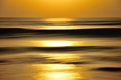 Golden sea by nao sakaki        nao sakaki: Photos · Blog