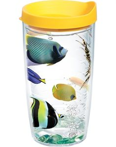 Tropical Fish Wrap with Lid  - 24oz tumbler