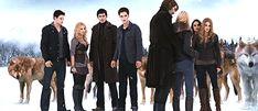 Aquaman, Breaking Dawn Part 2, Twilight Saga, Vampire Diaries, Harry Potter, Fans, Memories, Wonder Woman, Movies