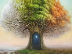 Tree of Time by Tomasz Alen Kopera.  @Graham Jenkin Jenkin Fine Art Gallery