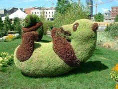 Зеленый креатив: скульптуры из кустов   AgroPortal.ua