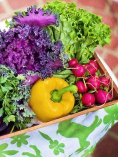 10+Vegan+Sources+of+Bioavailable+Calcium