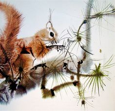Squirrel Animals We Love by Mirko Hanak, 1972 (Mirko Hanak is a Czech illustrator whose style is heavily influenced by Japanese and Chinese brush painting). Japanese Painting, Chinese Painting, Japanese Art, Squirrel Illustration, Art Et Illustration, Watercolor Animals, Watercolor And Ink, Art Asiatique, Chinese Brush