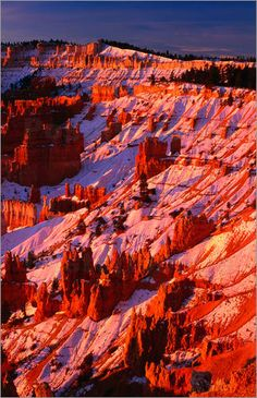 Winter time in Bryce Canyon National Park,Utah.