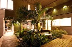 Tropical Indoor garden and yard