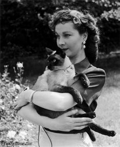 Vivien Leigh and her Siamese cat Ting Ling. - Siamese Cat - Ideas of Siamese Cat - Vivien Leigh and her Siamese cat Ting Ling. The post Vivien Leigh and her Siamese cat Ting Ling. appeared first on Cat Gig. Old Hollywood, Viejo Hollywood, Classic Hollywood, Hollywood Actresses, Vivien Leigh, Celebrities With Cats, Celebs, Crazy Cat Lady, Crazy Cats