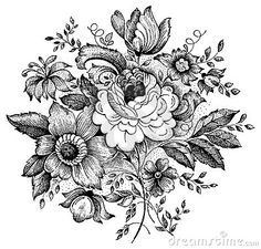 botanical drawings of flowers black and white - Google Search