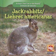 Jackrabbits/ Liebres Americanas