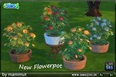 Blackys Sims 4 Zoo: Potted plant 1 by Mammut • Sims 4 Downloads