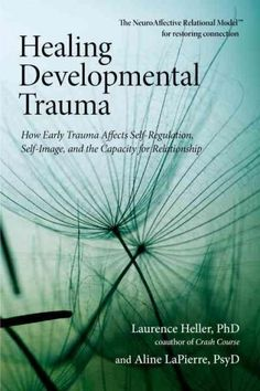 Written for those working to heal developmental trauma and seeking new tools for self-awareness and growth, this book focuses on conflicts surrounding the capacity for connection. Explaining that an i