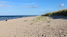 Gotska Sandön, ett isolerat paradis   arkiv   Resa   Gotland.net