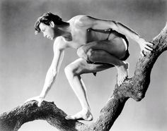 Annex - Weissmuller, Johnny (Tarzan and His Mate)_05.jpg (1635×1291)