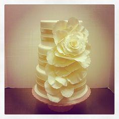 Rose wedding cake- Polkadots