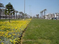 Roquetas Avenida Cádiz photo: Robert Bovington ***Roquetas de Mar article: http://www.unique-almeria.com/roquetas-de-mar.html  #Spain #travel #Robert_Bovington #Roquetas