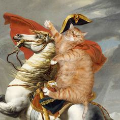 Jacques-Louis Davids Napoleon Crossing the Alps.Jacques-Louis Davids Napoleon Crossing the Alps. Fat Cats, Cats And Kittens, Crazy Cat Lady, Crazy Cats, Classic Paintings, Ginger Cats, Cat Drawing, Napoleon, Cat Memes